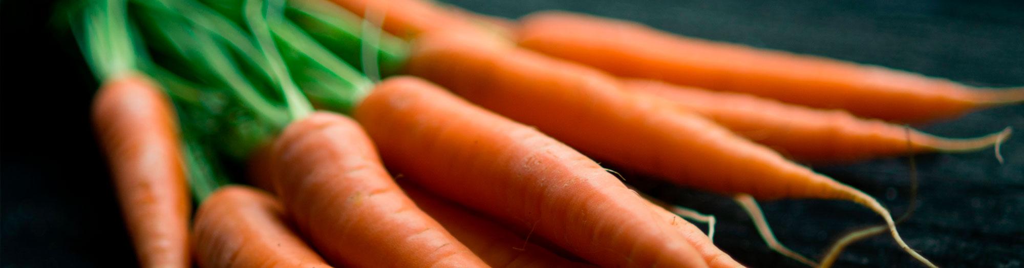 Insalatini, i benefici delle verdure fermentate